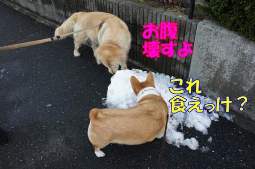 024_new