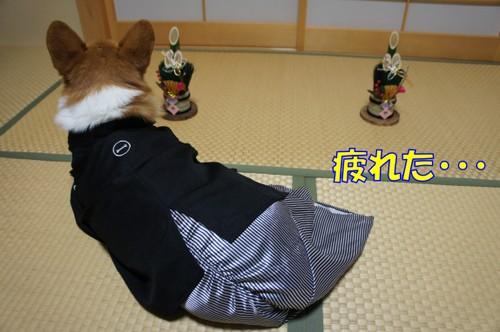 138_new