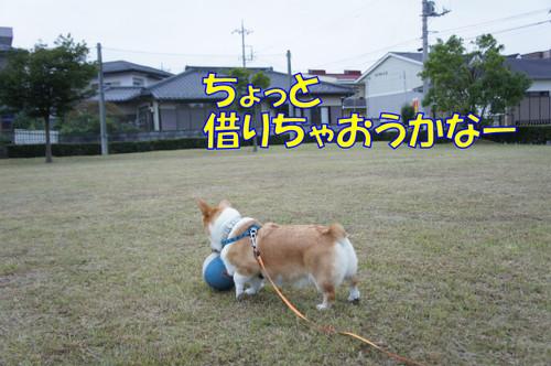 006_new