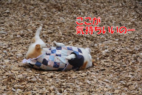1422_new