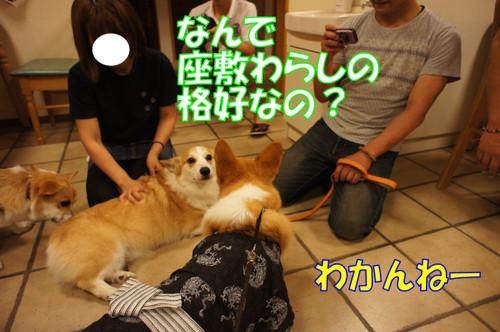 572_new