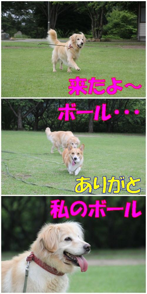 20110613_2_new