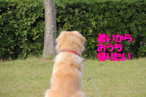 057_new