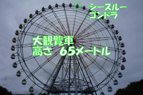 384_new
