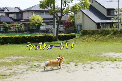 006_new_2