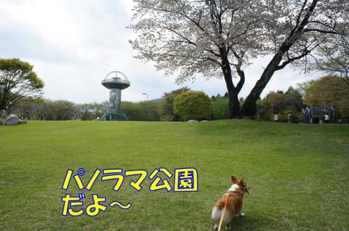 097_new