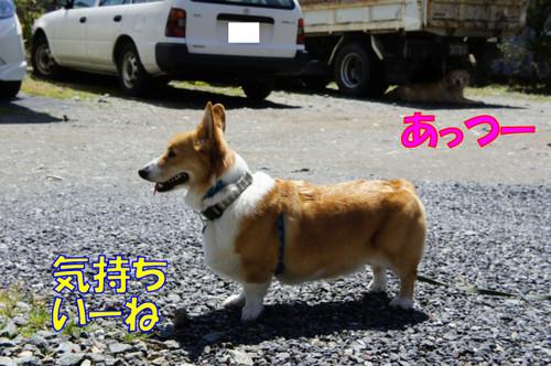010_new_2