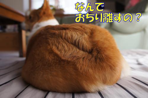 014_new_2