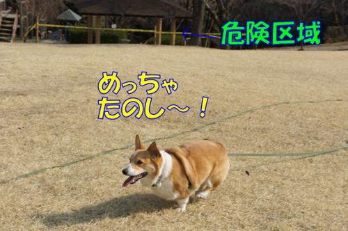 090_new