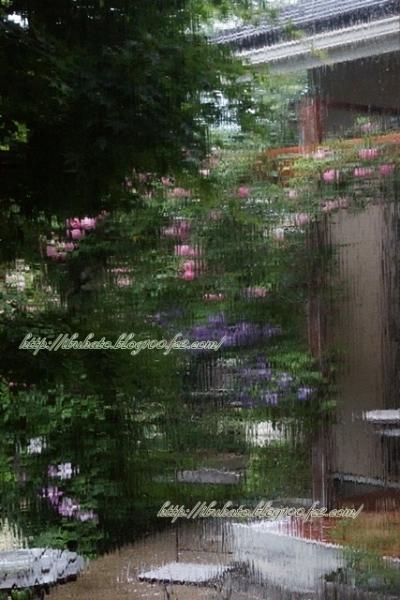 watermarked-DSC03564 - コピー