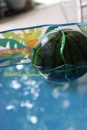 watermarked-DSC06264.jpg