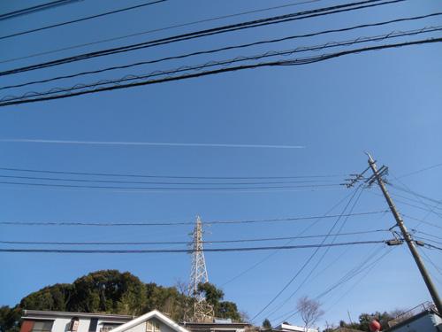 電線で分かりにくいな。