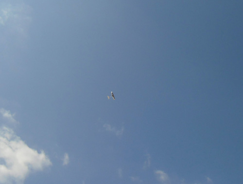 kh-16飛んでるよ。