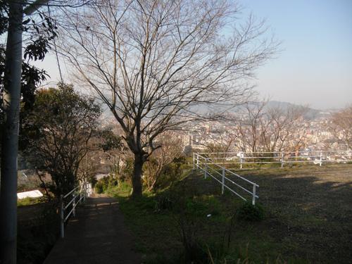 24日のお散歩5