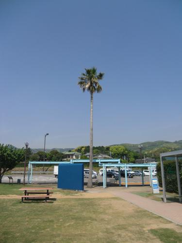 帰路の大村湾SA。