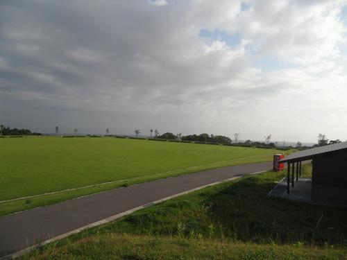 百花台公園の新しい芝生広場1