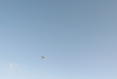 kh-16 飛んでるよ。