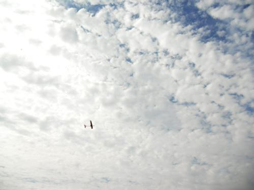 kh-16 オバハン飛行中~!その1