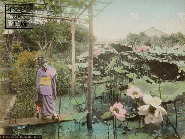 01-8004-520本用東)亀井戸NG写真のコピー