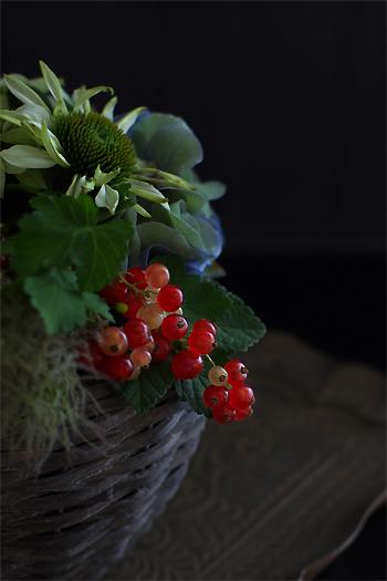 Mphoto花かご