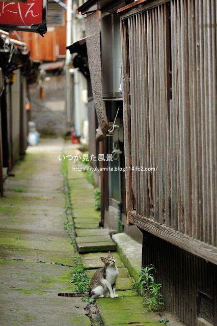 DS7_0226ri-s.jpg