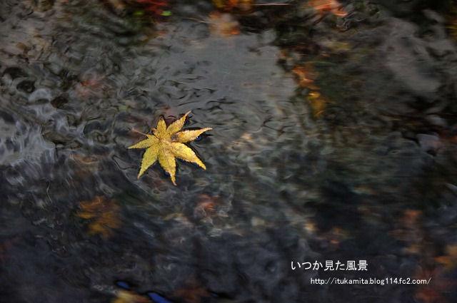 DS7_5722ri-s.jpg