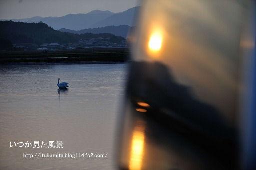 DS7_5996ri-ss.jpg