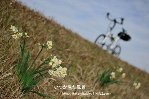 DS7_7108ri-ss.jpg