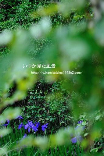 DS7_9653ri-ss.jpg
