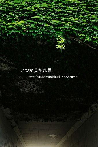 DS7_9975ri-ss.jpg