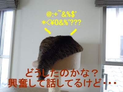018_2014061016132727a.jpg