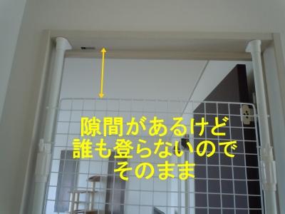 036_201407091722135f2.jpg