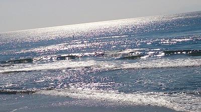 きらきらの海