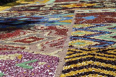 8万本の薔薇の花びら