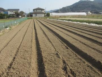 農園26年度の準備4