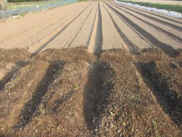 農園26年度の準備5