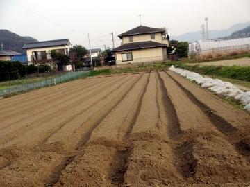 農園26年度の準備10