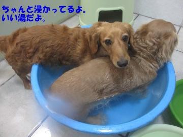 お風呂で足が2