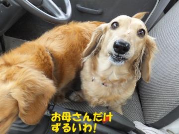冨永裕輔15