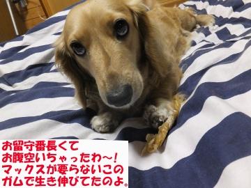 もみまき椎田8