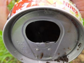 空き缶で11
