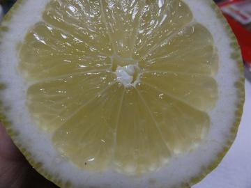 レモンを切った