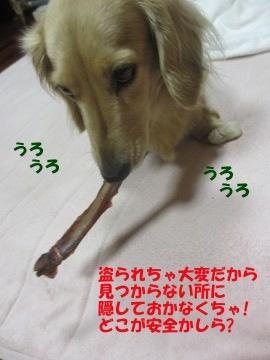 でっかいの!5