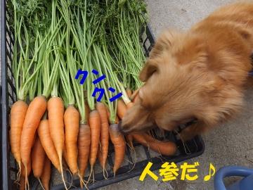 食べたいの?4