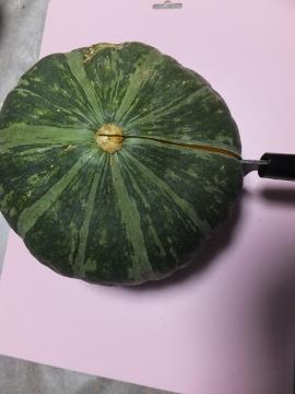 かぼちゃ簡単に切れます4