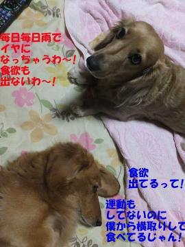 もみすり新米26-7