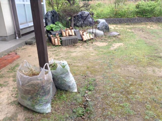 2014/5/12草刈りc