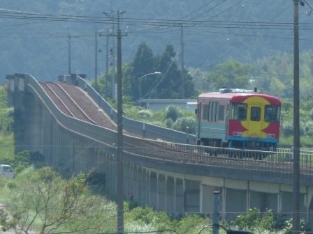 土佐くろしお鉄道 中村・宿毛線 8000形 5