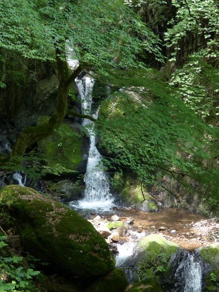 白猪の滝 2