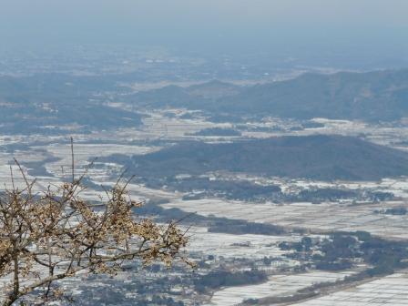 筑波山ケーブルカー 山頂駅付近からの眺め